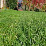 jardineria en temuco